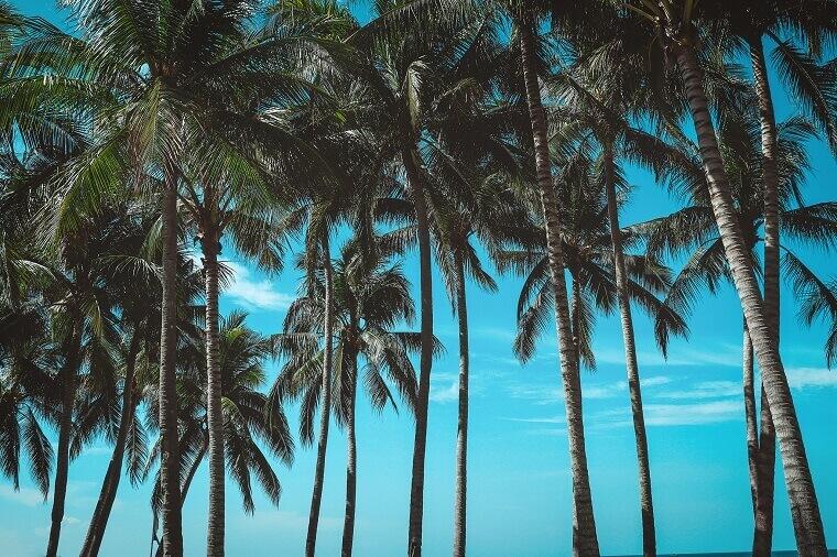 エポスカードは海外旅行保険が自動付帯