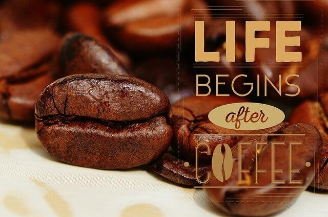 ハンドピックされたコーヒー豆